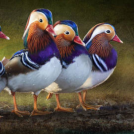 R christopher Vest - The Four Brothers- Mandarin Ducks