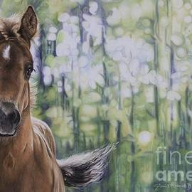 Joni Beinborn - The Frilly Filly