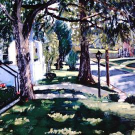 David Zimmerman - The Front Yard