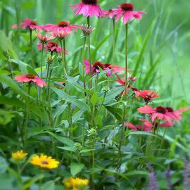 Lila Fisher-Wenzel - The Garden