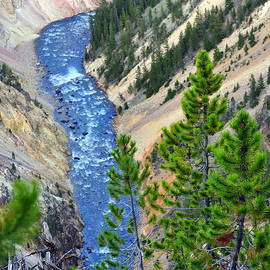 Lisa Holland-Gillem - The Grand Canyon of Yellowstone II