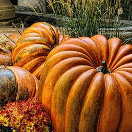 Tammy Espino - The great pumpkin