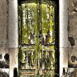 Marco Oliveira - The Green Door