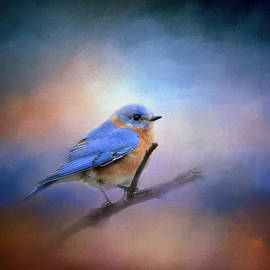 Jai Johnson - The Happiest Blue - Bluebird