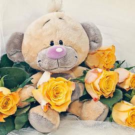 Cristina-Velina Ion - The happy teddy bear
