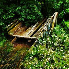 Steve Taylor - The Hay Cart