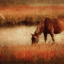 Georgiana Romanovna - The Horse And The Gull - Vintage