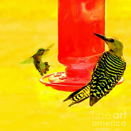 Bob and Nadine Johnston - The Humming Bird and Gila Woodpecker