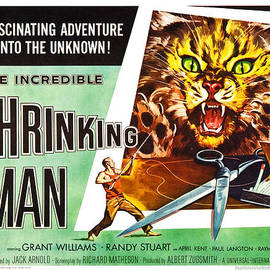 Gianfranco Weiss - The Incredible Shrinking Man Poster