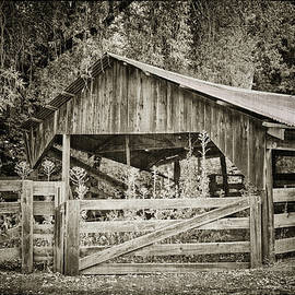 Joan Carroll - The Last Barn