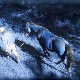 Patricia Keller - The Light and Shadows of A Man and His Horse