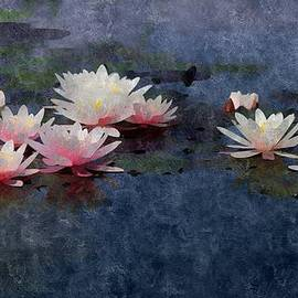 Karyn Robinson - The Lily Pond