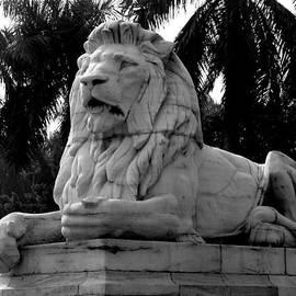 Prajakta P - The lion