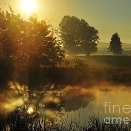 Terri Gostola - The Magic of Nature 4