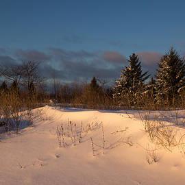 Georgia Mizuleva - The Morning After the Snowstorm