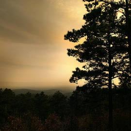 Nina Fosdick - The Mountain View
