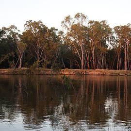 Carole Hinding - The Murray River