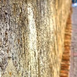 Sandra Pena de Ortiz - The Old Wall of San Juan