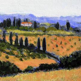 David Zimmerman - The Olive Grove
