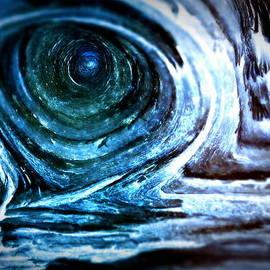 Lisa Holland-Gillem - The Ominous Eye