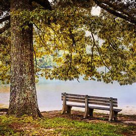 Debra and Dave Vanderlaan - The Park Bench