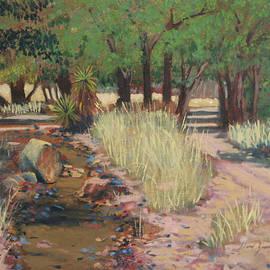 David Zimmerman - The Path to the Chiricahuas