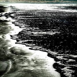 Steve Taylor - The Peaceful Ocean