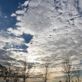 Georgia Mizuleva - The Pearly Cloud