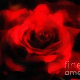 Scott B Bennett - The perfect Rose