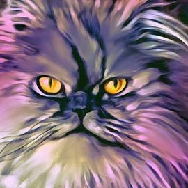 Scott Wallace - The Persian Cat