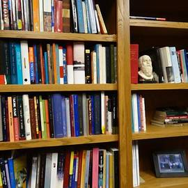 Dan Sproul - The Philosophy Professor Bookshelf