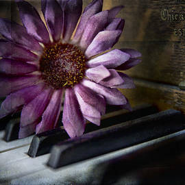 Evie Carrier - The Piano