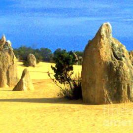 Roberto Gagliardi - The Pinnacles Desert 1