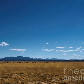 Tim Richards - The Plain near Cochiti