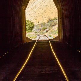 Mitch Shindelbower - The Portal