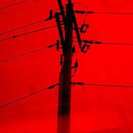 Allen n Lehman - The Power Of Red