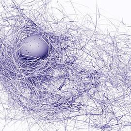 Jennie Marie Schell - The Purple Egg