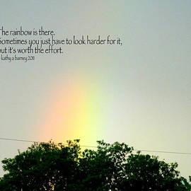 Kathy Barney - The Urban Rainbow