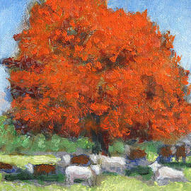 David Zimmerman - The Red Maple Large