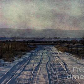 Janice Rae Pariza - The Road Less Traveled