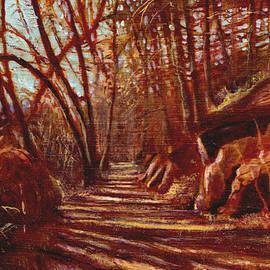 David Zimmerman - The Road To Redrock