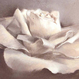 Beverly Shaw-starkovich - The Rose