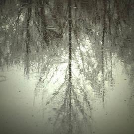 C E Dyer - The Sacred Mirror