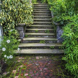 Ian Mitchell - The Secret Garden