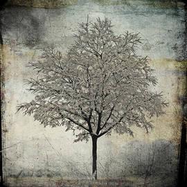 Roberto Lupini - The secret tree