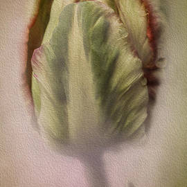 Diane Schuster - The Showoff Parrot Tulip