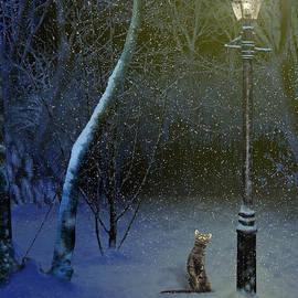 Nigel Follett - The Snow Cat