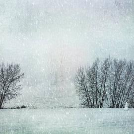 Theresa Tahara - The Snow Sentry