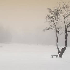 Bill  Wakeley - The Solitude of Winter
