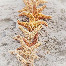 Debra Fedchin - The Starfish Line Dance